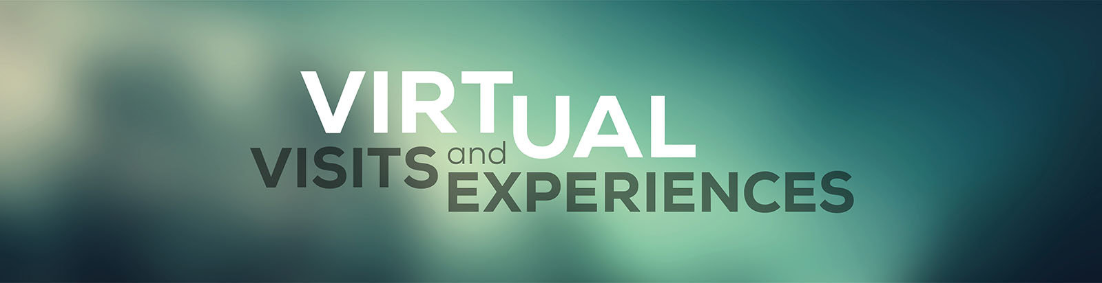 Virtual visits and experiences